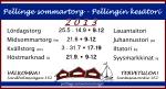 pellinki SOMMARTORG-2013-FISE