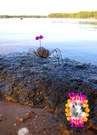 Spiderbug.villaylle
